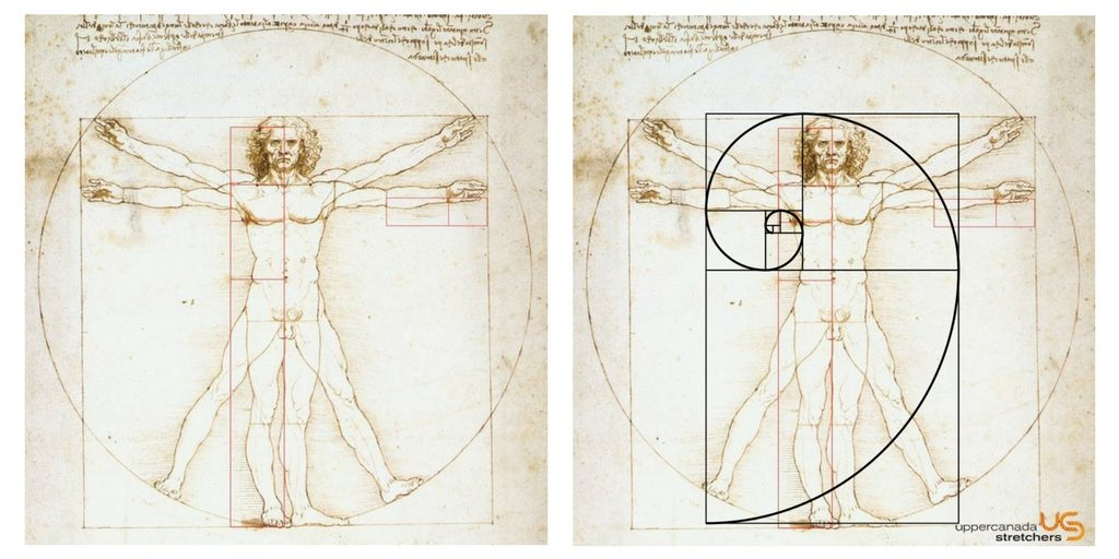 Vitruvian Man through the lens of the Golden Spiral
